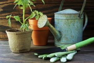 Reasons to Buy Garden Accessories Online