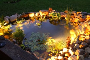 Reasons to Illuminate Your Pond with Underwater LED Lights