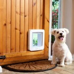 dog door