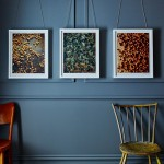 photography-prints
