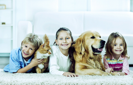 Carpet-Cleaners-in-Melbourne