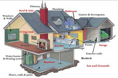 Building and Pest Inspection