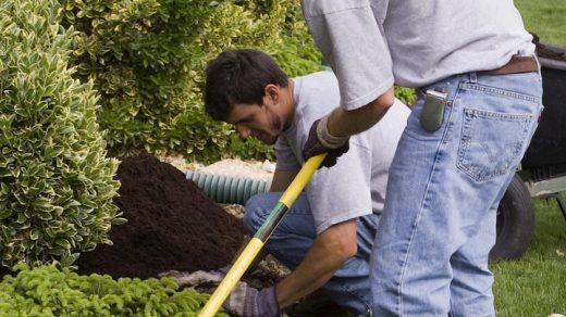 professional mulching service