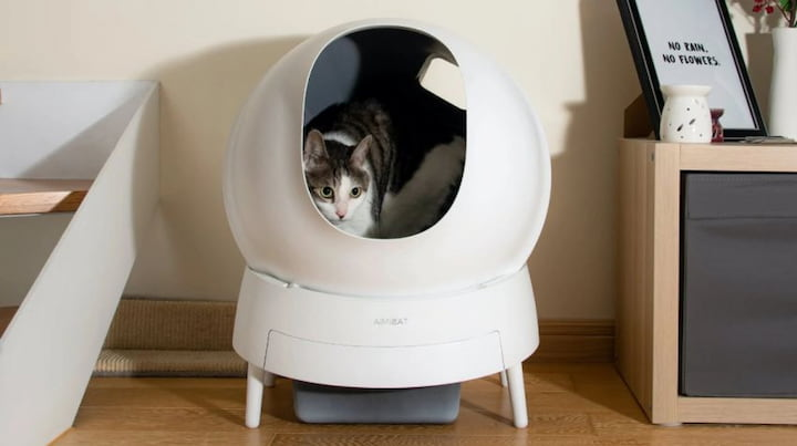 cat filter litter box