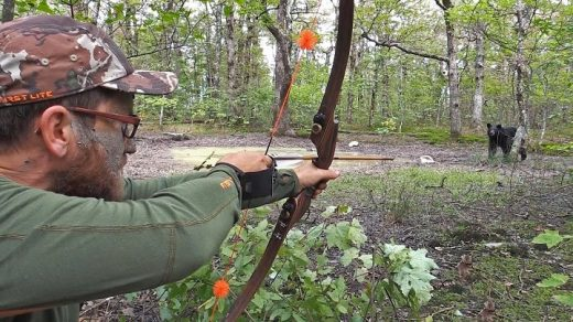 Best Bow for Hunting